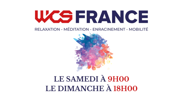 cours wcs